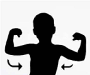 flex muscles 300