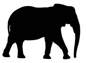 elephantsilouhette